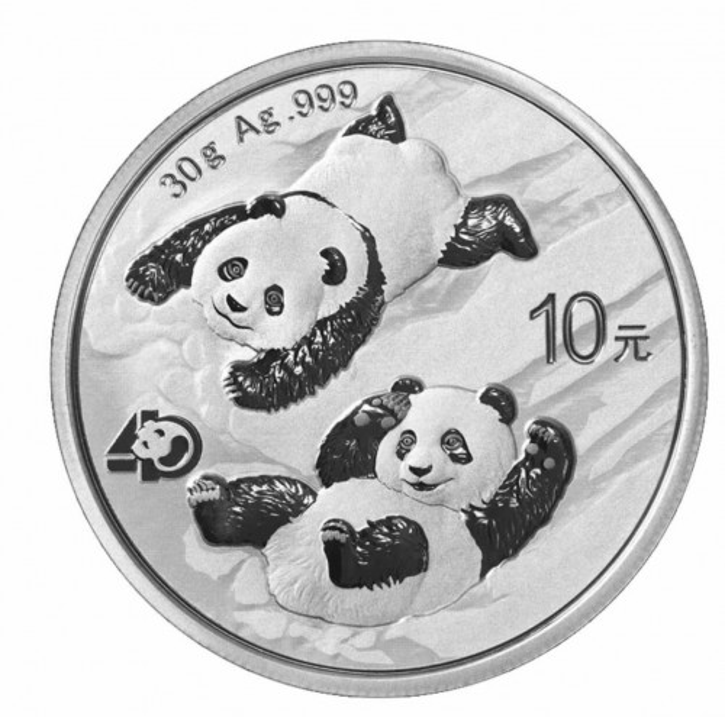 China Panda Silber 30 g 2022