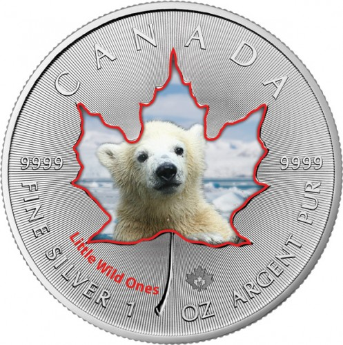 Maple Leaf Wildlife 2016 Tierbabys - Polarbär coloriert Silber 1 oz