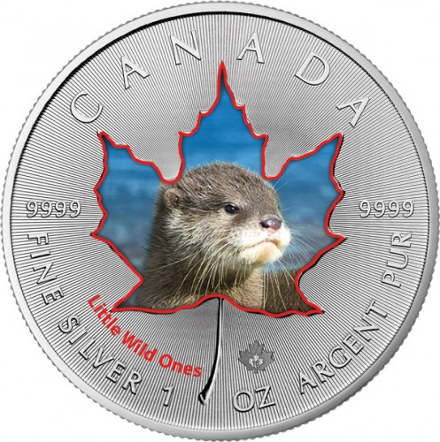 Maple Leaf Wildlife 2016 Tierbabys - Otter coloriert Silber 1 oz