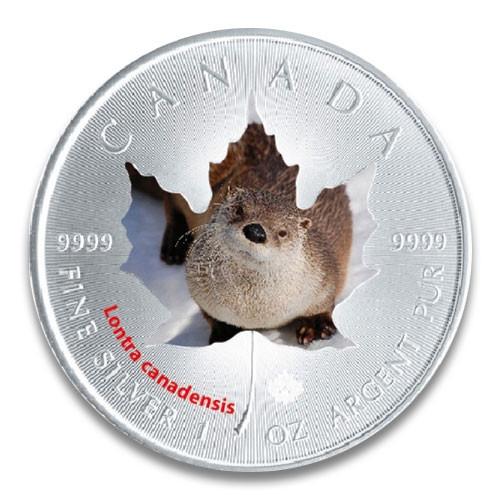 Maple Leaf Wildlife 2015 Kanadischer Fischotter coloriert Silber 1 oz