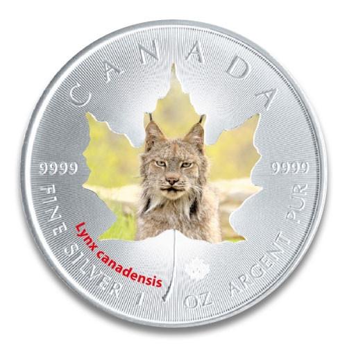 Maple Leaf Wildlife 2015 Kanadischer Luchs coloriert Silber 1 oz