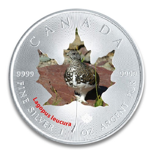 Maple Leaf Wildlife 2015 Schneehuhn coloriert Silber 1 oz