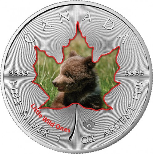 Maple Leaf Wildlife 2016 Tierbabys - Grizzly-Bär coloriert Silber 1 oz