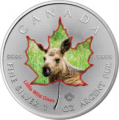 Maple Leaf Wildlife 2016 Tierbabys - Elch coloriert Silber 1 oz